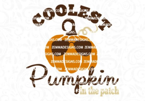 0300-cooleset-pumpkin-in-the-patch